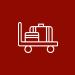 baggage management